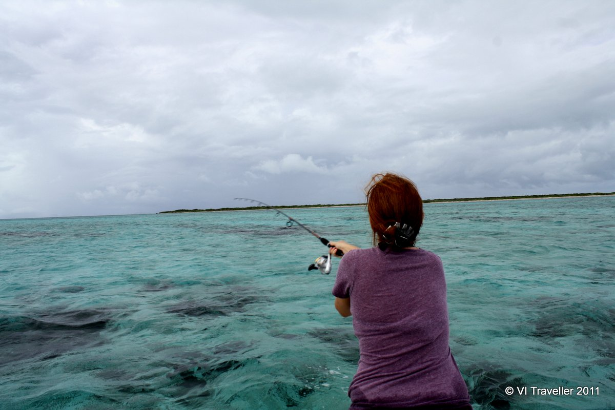301 moved permanently for Virgin islands fishing